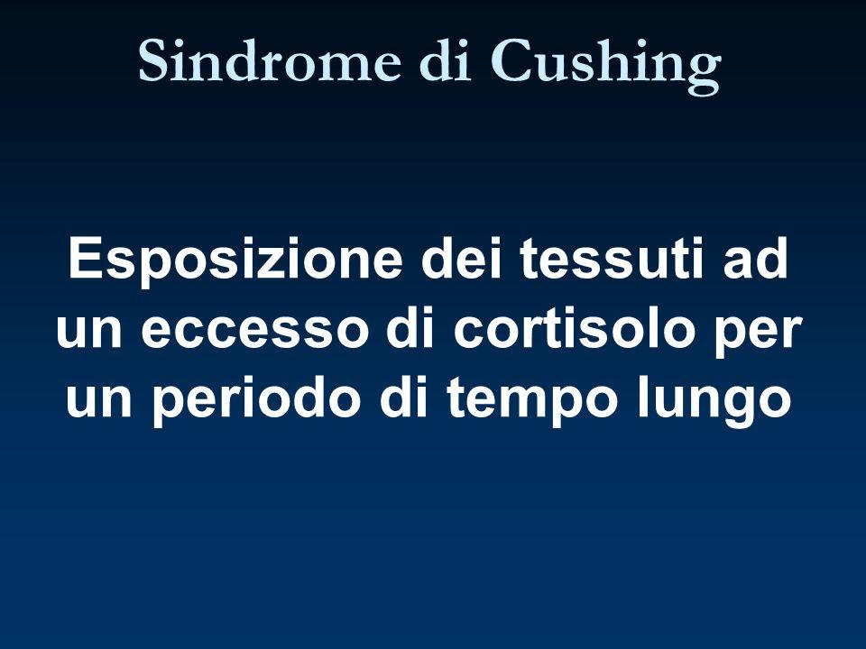 Esposizione dei tessuti ad un eccesso di cortisolo per un periodo di tempo lungo Sindrome di Cushing