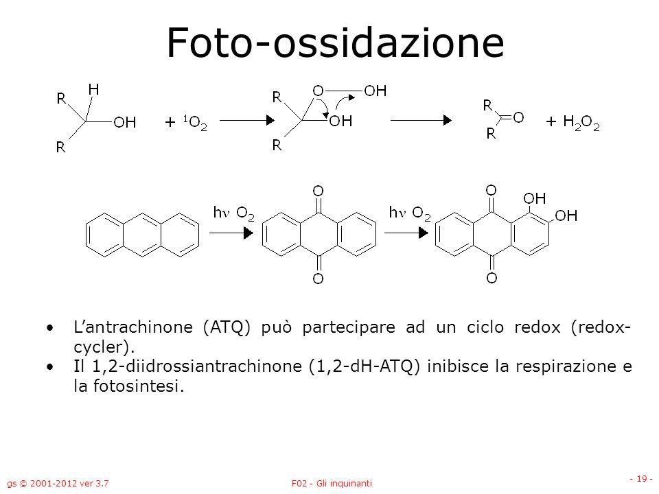 gs © 2001-2012 ver 3.7F02 - Gli inquinanti - 19 - Foto-ossidazione Lantrachinone (ATQ) può partecipare ad un ciclo redox (redox- cycler). Il 1,2-diidr
