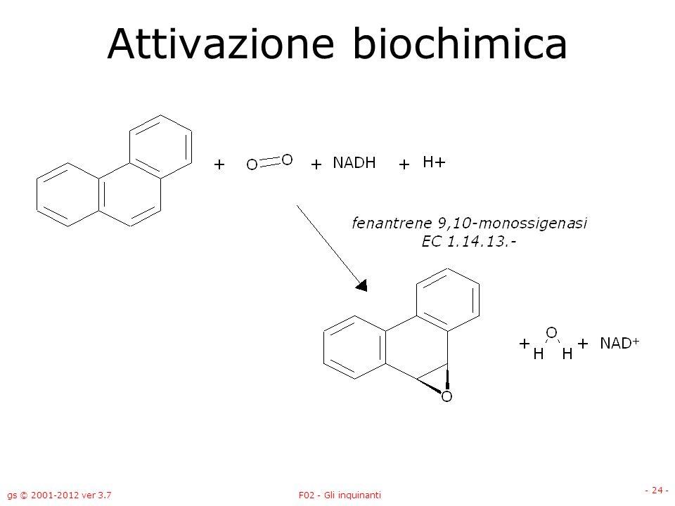gs © 2001-2012 ver 3.7F02 - Gli inquinanti - 24 - Attivazione biochimica