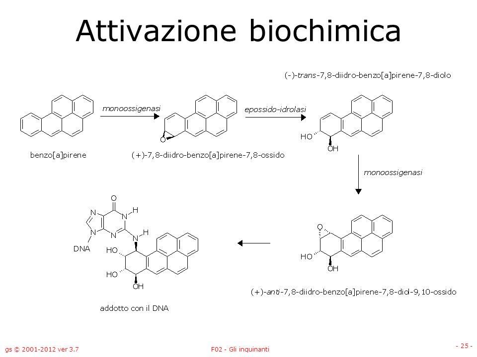 gs © 2001-2012 ver 3.7F02 - Gli inquinanti - 25 - Attivazione biochimica