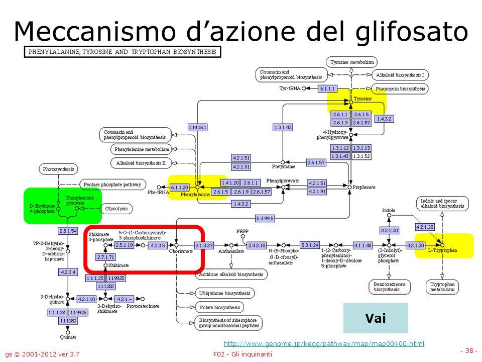 gs © 2001-2012 ver 3.7F02 - Gli inquinanti - 38 - Gli inquinanti Vai Meccanismo dazione del glifosato http://www.genome.jp/kegg/pathway/map/map00400.h