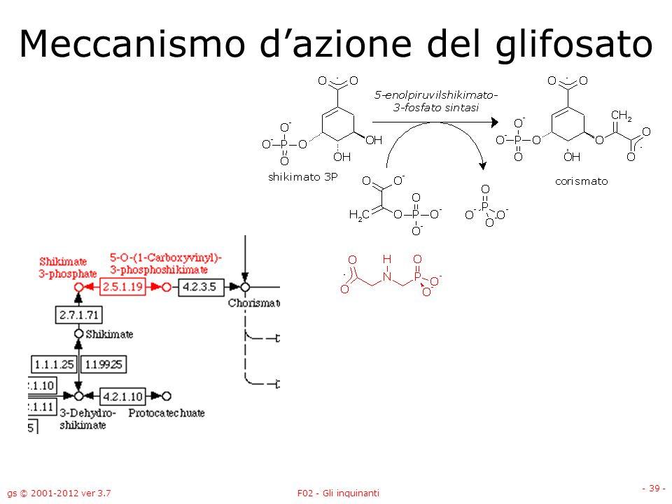 gs © 2001-2012 ver 3.7F02 - Gli inquinanti - 39 - Meccanismo dazione del glifosato