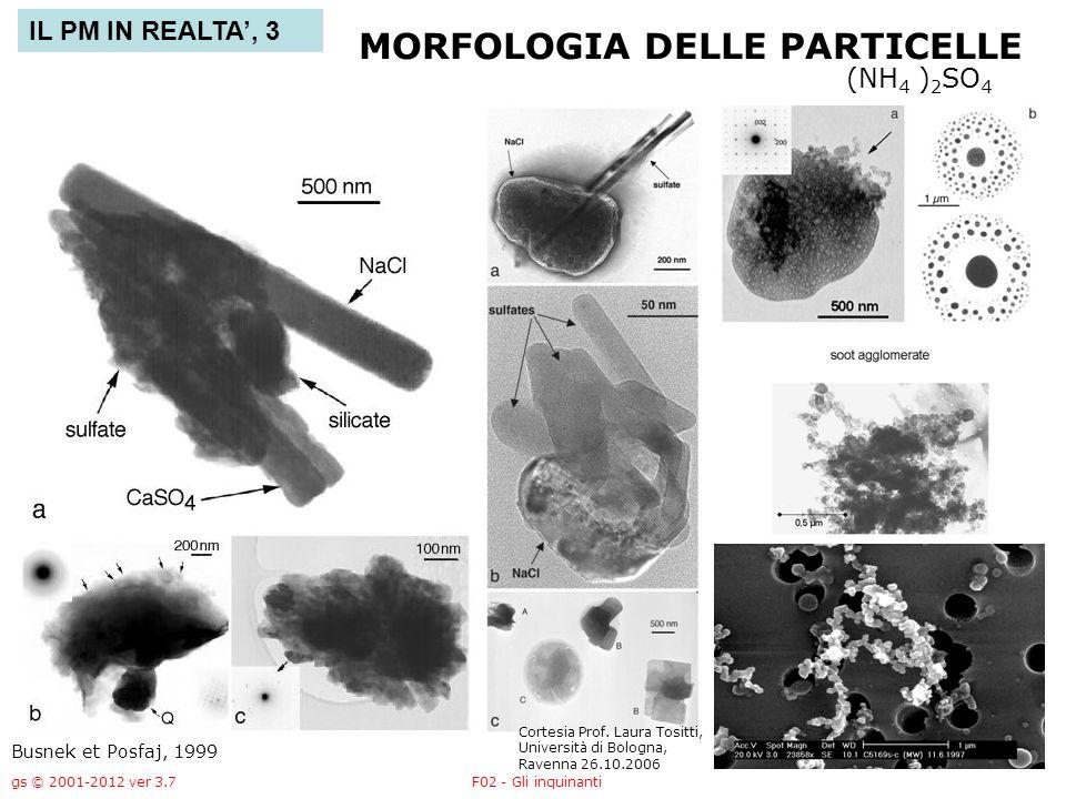 gs © 2001-2012 ver 3.7F02 - Gli inquinanti - 47 - MORFOLOGIA DELLE PARTICELLE Busnek et Posfaj, 1999 (NH 4 ) 2 SO 4 IL PM IN REALTA, 3 Cortesia Prof.
