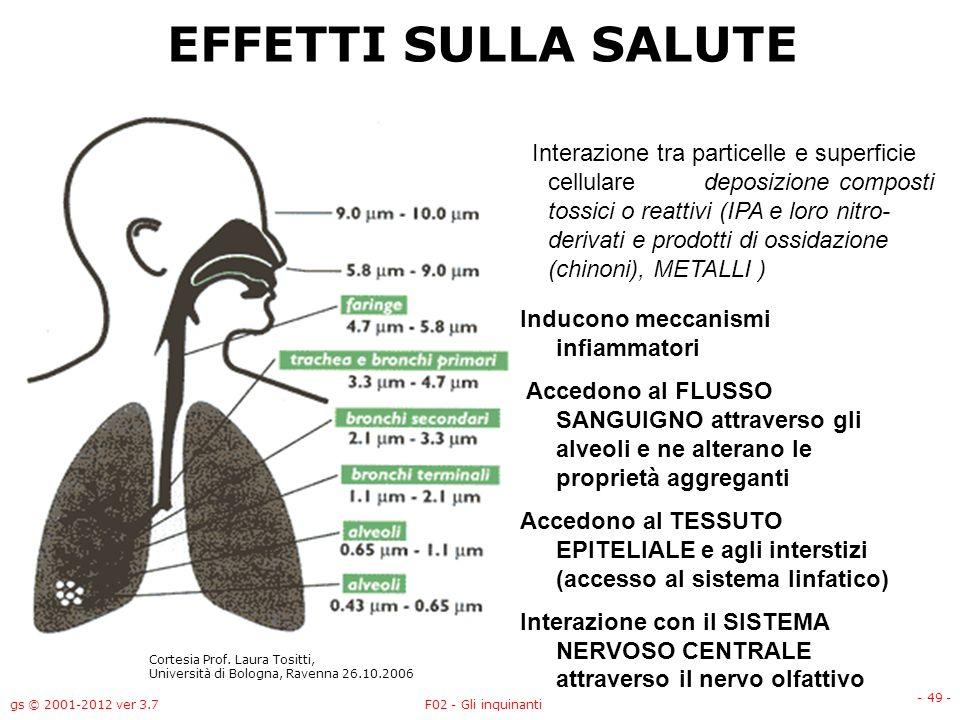 gs © 2001-2012 ver 3.7F02 - Gli inquinanti - 49 - EFFETTI SULLA SALUTE Interazione tra particelle e superficie cellulare deposizione composti tossici
