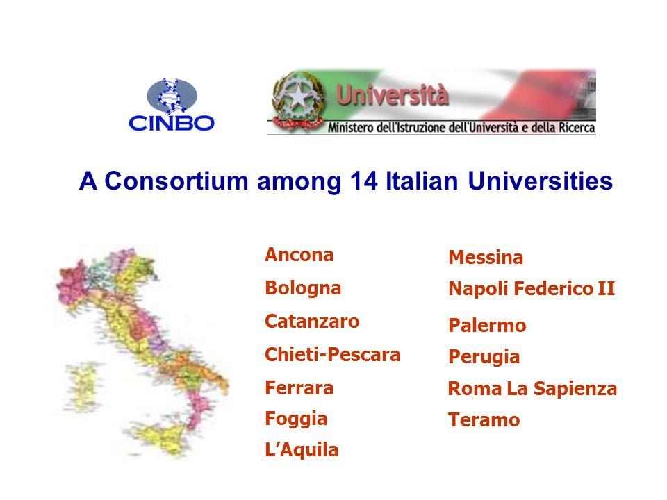 Bologna Chieti-Pescara Ferrara Catanzaro Palermo Roma La Sapienza Napoli Federico II Perugia Ancona Teramo LAquila A Consortium among 14 Italian Unive