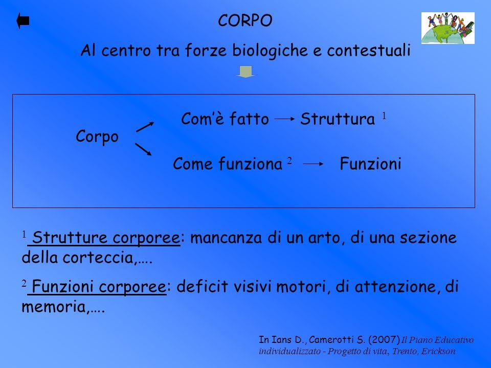CORPO Al centro tra forze biologiche e contestuali Corpo Comè fatto Struttura 1 Come funziona 2 Funzioni 1 Strutture corporee: mancanza di un arto, di
