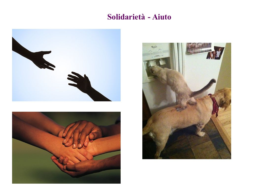 Solidarietà - Aiuto