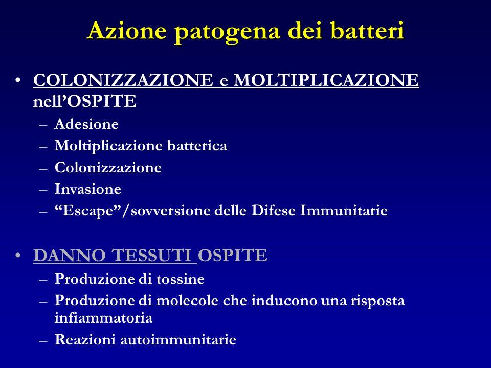 Azione patogena dei batteri COLONIZZAZIONE e MOLTIPLICAZIONE nellOSPITE –Adesione –Moltiplicazione batterica –Colonizzazione –Invasione –Escape/sovver