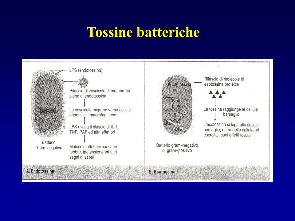 Tossine batteriche