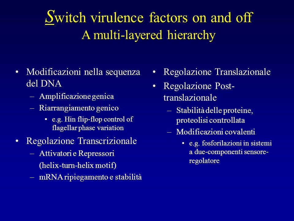 S witch virulence factors on and off A multi-layered hierarchy Modificazioni nella sequenza del DNA –Amplificazione genica –Riarrangiamento genico e.g