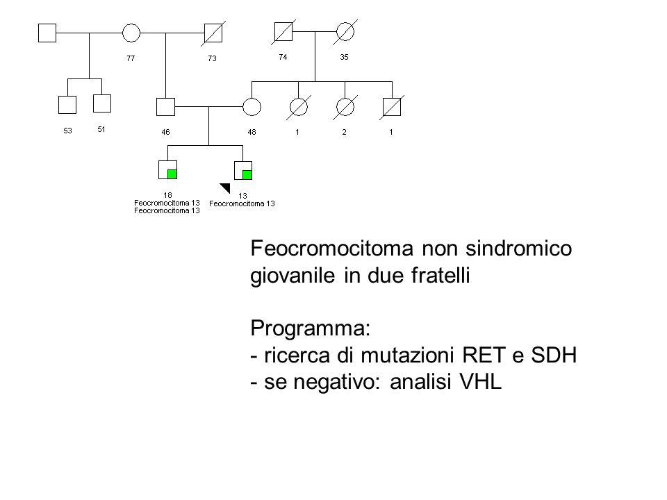 Feocromocitoma non sindromico giovanile in due fratelli Programma: - ricerca di mutazioni RET e SDH - se negativo: analisi VHL