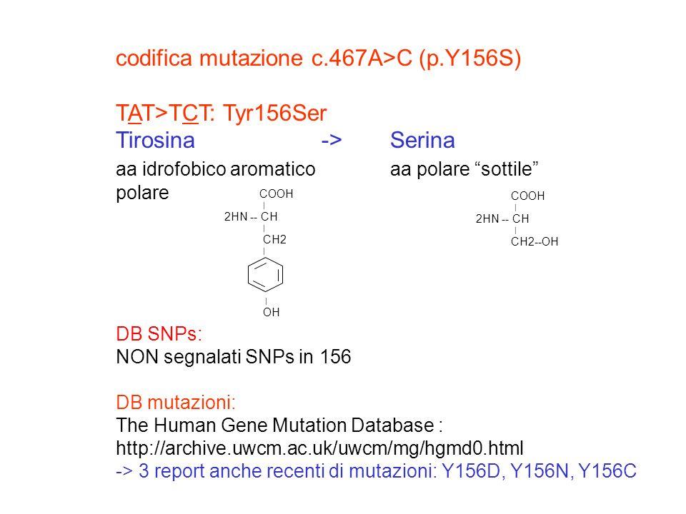 DB SNPs: NON segnalati SNPs in 156 DB mutazioni: The Human Gene Mutation Database : http://archive.uwcm.ac.uk/uwcm/mg/hgmd0.html -> 3 report anche rec