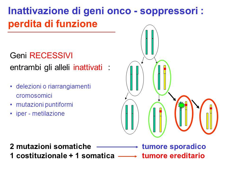 Geni RECESSIVI entrambi gli alleli inattivati : delezioni o riarrangiamenti cromosomici mutazioni puntiformi iper - metilazione 2 mutazioni somatiche