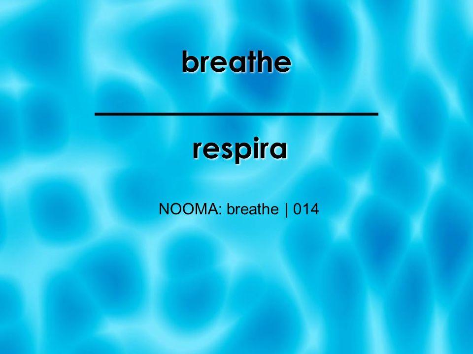 breathe NOOMA: breathe | 014 respira
