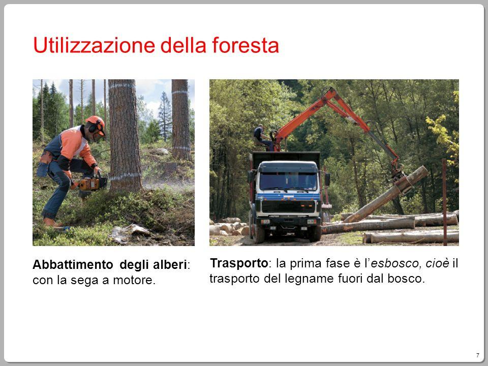 7 Utilizzazione della foresta Abbattimento degli alberi: con la sega a motore. Trasporto: la prima fase è lesbosco, cioè il trasporto del legname fuor