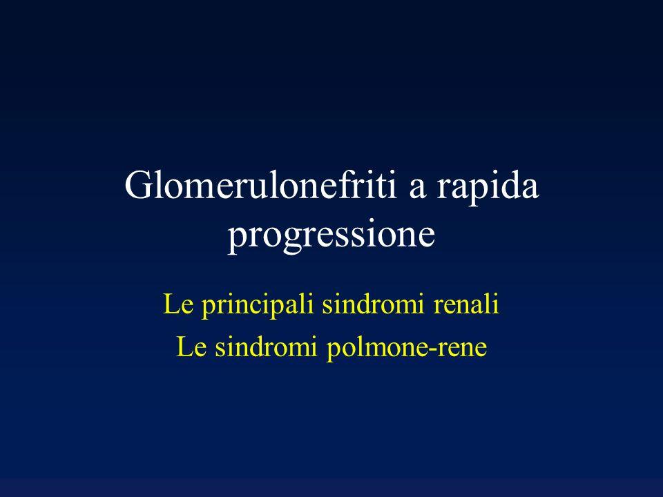 Glomerulonefriti a rapida progressione Le principali sindromi renali Le sindromi polmone-rene