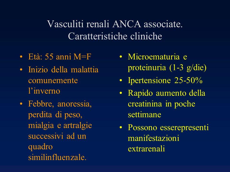 Vasculiti renali ANCA associate. Caratteristiche cliniche Età: 55 anni M=F Inizio della malattia comunemente linverno Febbre, anoressia, perdita di pe