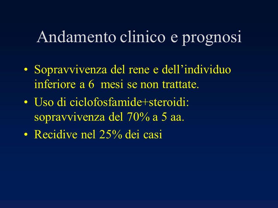Andamento clinico e prognosi Sopravvivenza del rene e dellindividuo inferiore a 6 mesi se non trattate. Uso di ciclofosfamide+steroidi: sopravvivenza