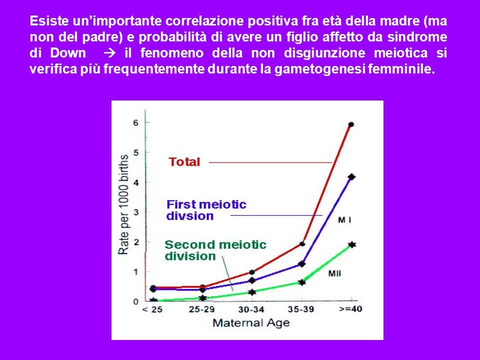 Esiste unimportante correlazione positiva fra età della madre (ma non del padre) e probabilità di avere un figlio affetto da sindrome di Down il fenom