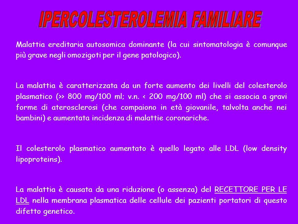 Malattia ereditaria autosomica dominante (la cui sintomatologia è comunque più grave negli omozigoti per il gene patologico). La malattia è caratteriz