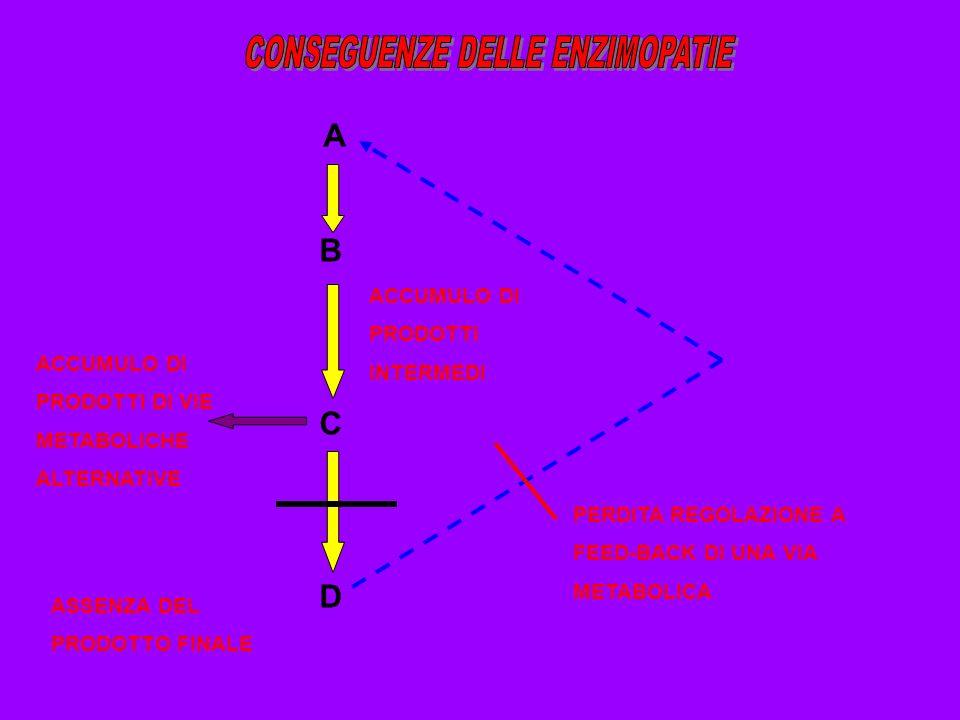 A B C D PERDITA REGOLAZIONE A FEED-BACK DI UNA VIA METABOLICA ACCUMULO DI PRODOTTI DI VIE METABOLICHE ALTERNATIVE ASSENZA DEL PRODOTTO FINALE ACCUMULO
