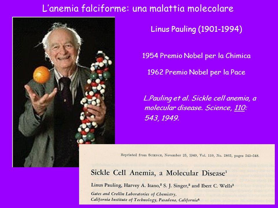Linus Pauling (1901-1994) 1954 Premio Nobel per la Chimica 1962 Premio Nobel per la Pace L.Pauling et al. Sickle cell anemia, a molecular disease. Sci