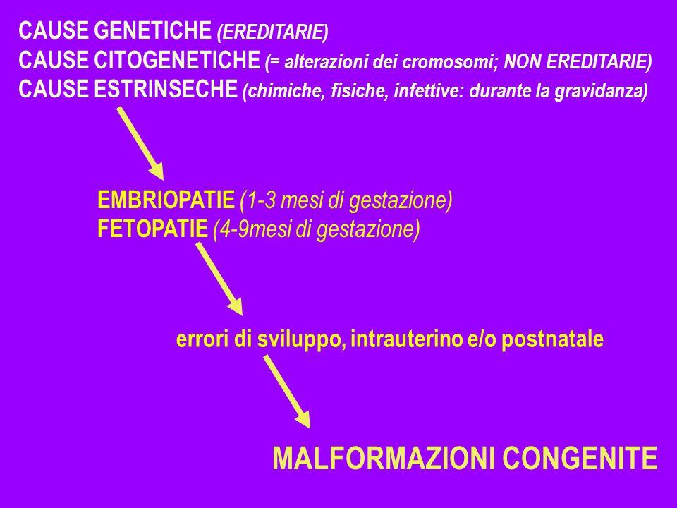 CAUSE GENETICHE (EREDITARIE) CAUSE CITOGENETICHE (= alterazioni dei cromosomi; NON EREDITARIE) CAUSE ESTRINSECHE (chimiche, fisiche, infettive: durant