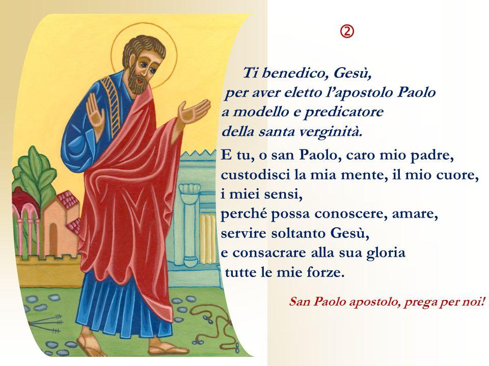 Ti benedico, Gesù, per aver eletto lapostolo Paolo a modello e predicatore della santa verginità. E tu, o san Paolo, caro mio padre, custodisci la mia