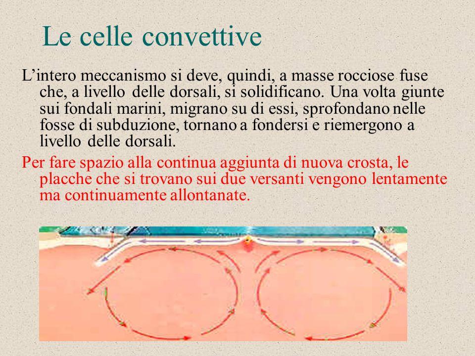 I moti convettivi del mantello Queste ed altre scoperte portarono ad ipotizzare lesistenza di profondi moti convettivi che trasportano in superficie,