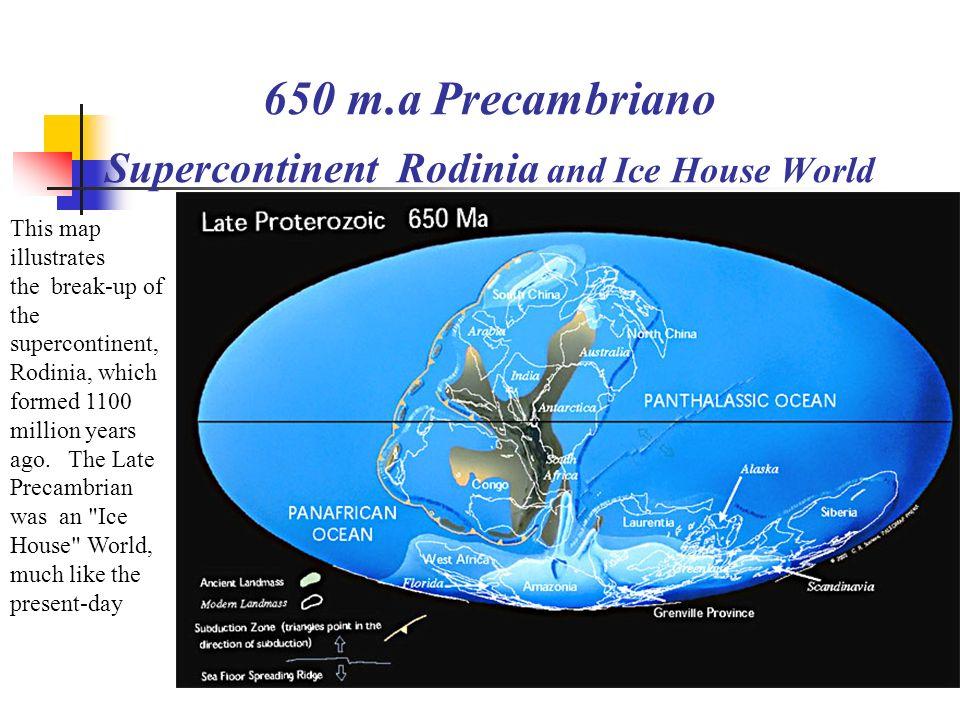 La terra ieri oggi e domani http://www.scotese.com (Martin Scotese) 650 m.a Precambriano Supercontinent Rodinia and Ice Hous... 514 m.a. tardo Cambria