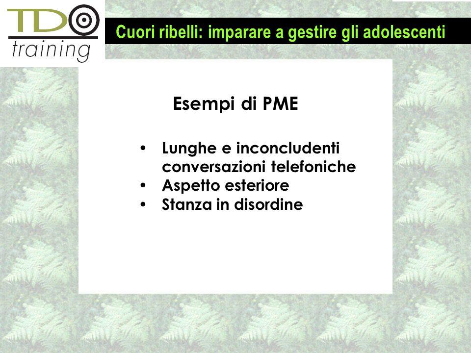 Esempi di PME Lunghe e inconcludenti conversazioni telefoniche Aspetto esteriore Stanza in disordine Cuori ribelli: imparare a gestire gli adolescenti