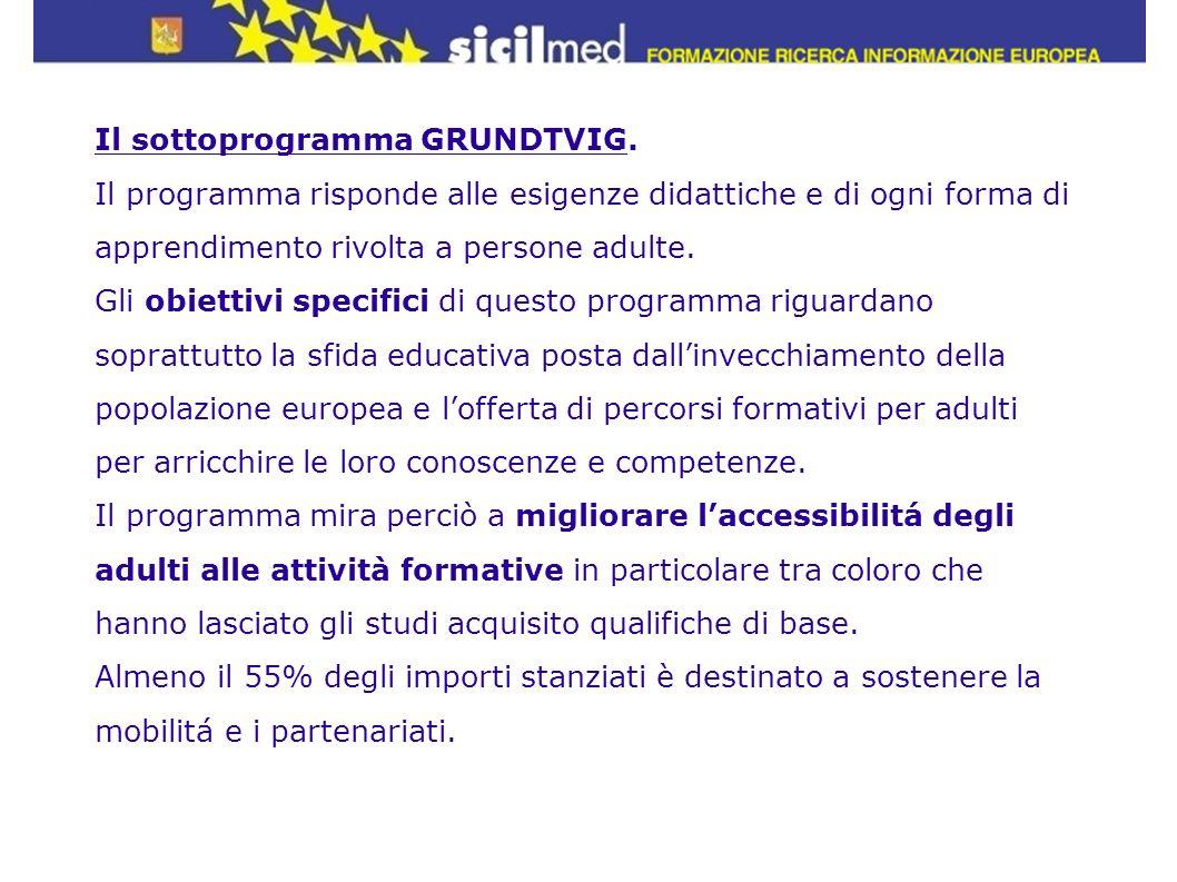 Il sottoprogramma GRUNDTVIG. Il programma risponde alle esigenze didattiche e di ogni forma di apprendimento rivolta a persone adulte. Gli obiettivi s