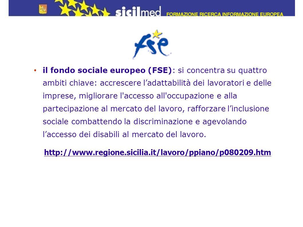 il fondo sociale europeo (FSE): si concentra su quattro ambiti chiave: accrescere ladattabilità dei lavoratori e delle imprese, migliorare l'accesso a