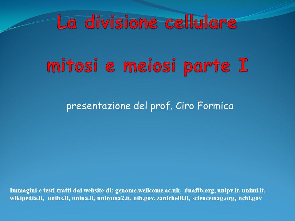 presentazione del prof. Ciro Formica Immagini e testi tratti dai website di: genome.wellcome.ac.uk, dnaftb.org, unipv.it, unimi.it, wikipedia.it, unib