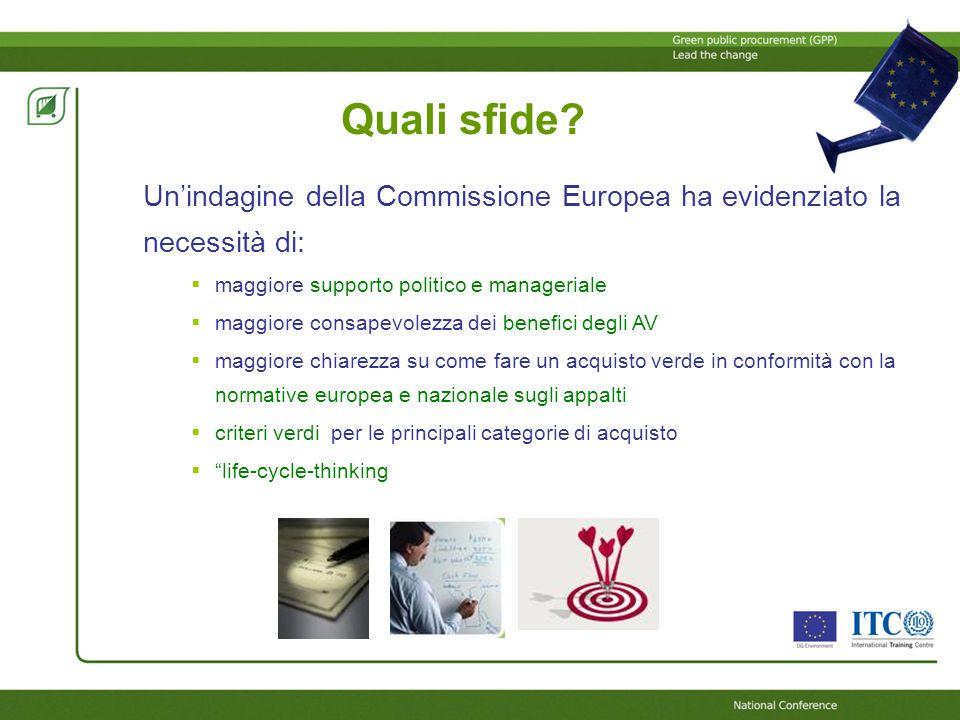 Quali sfide? Unindagine della Commissione Europea ha evidenziato la necessità di: maggiore supporto politico e manageriale maggiore consapevolezza dei