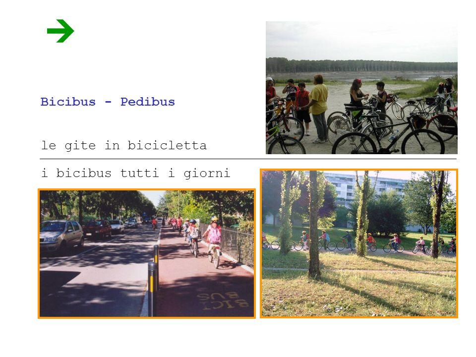 Bicibus - Pedibus le gite in bicicletta i bicibus tutti i giorni