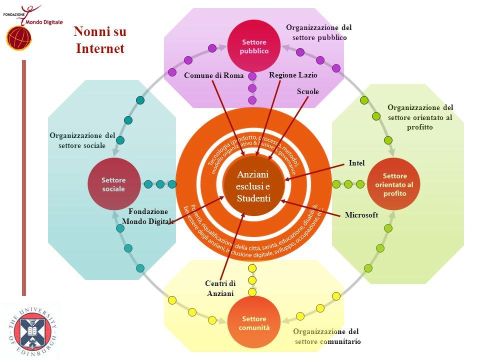 Organizzazione del settore orientato al profitto Organizzazione del settore sociale Organizzazione del settore pubblico Organizzazione del settore com