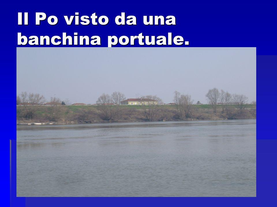 A Polesella una volta cerano sette moli (lingue di terra in cui le barche arrivavano e scaricavano le loro merci).