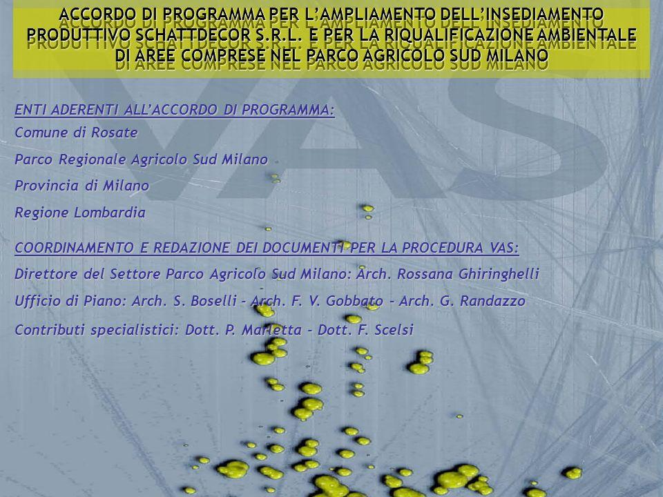 SCOPING: ATTIVITA, CONTENUTI E PROCEDURE CRONOPROGRAMMA