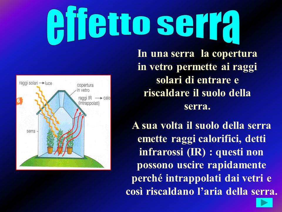 Conseguenze per lambiente EFFETTO SERRA BUCO DELLOZONO PIOGGE ACIDE