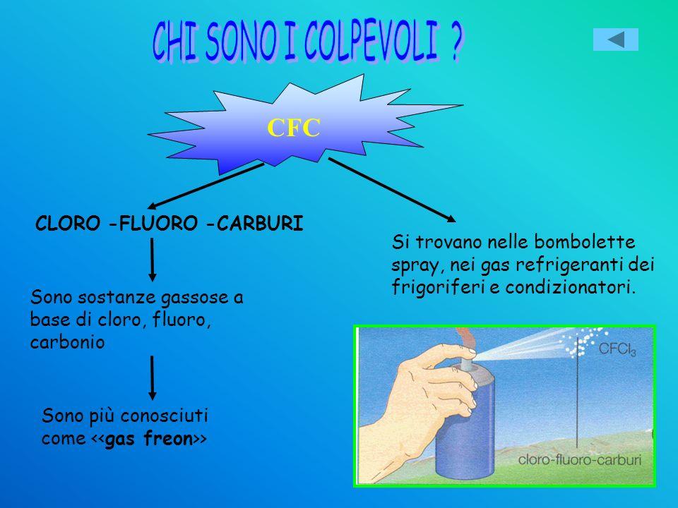 L ozono : uno scudo bucato dal freon. Negli ultimi 30 anni lo strato di ozono è diventato sempre più sottile e sopra lArtide e lAntartide si sono form