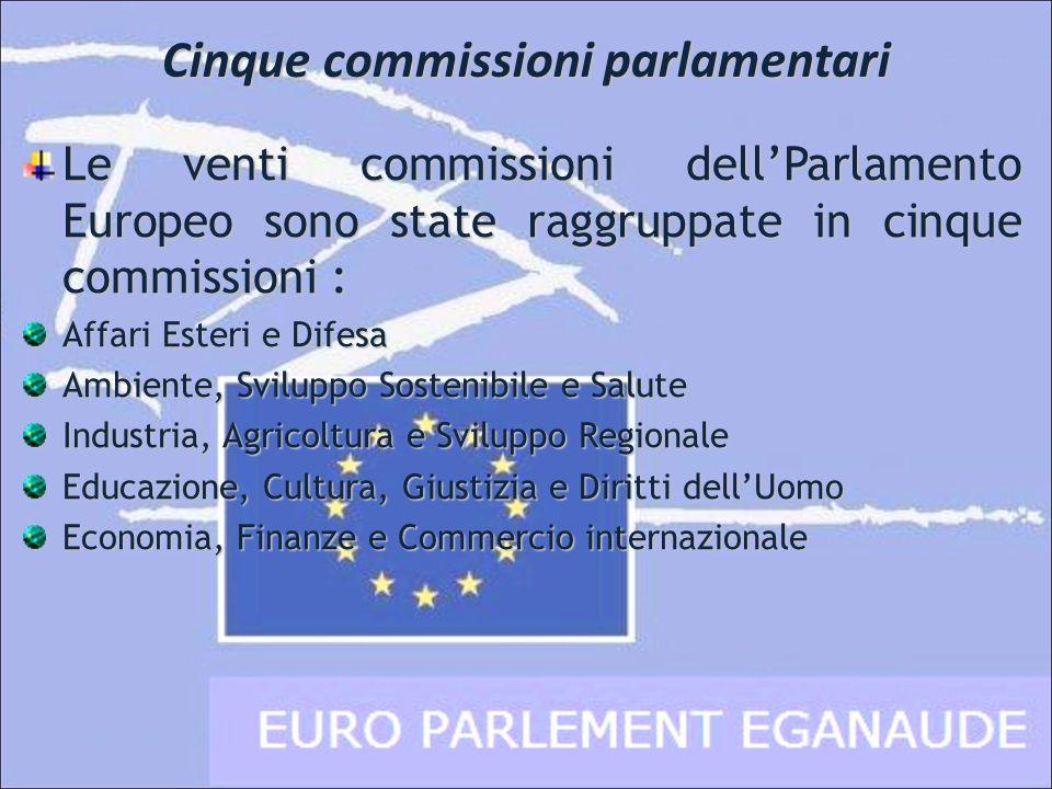 Cinque commissioni parlamentari Le venti commissioni dellParlamento Europeo sono state raggruppate in cinque commissioni : Affari Esteri e Difesa Ambi