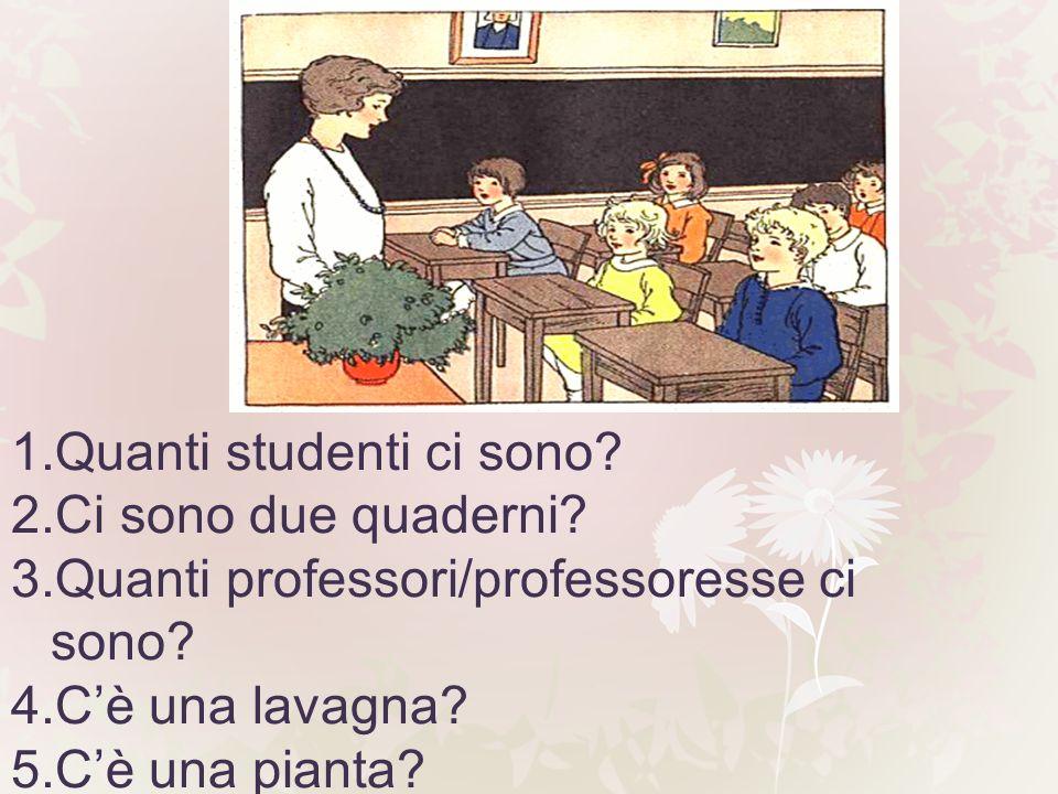 1.Quanti studenti ci sono? 2.Ci sono due quaderni? 3.Quanti professori/professoresse ci sono? 4.Cè una lavagna? 5.Cè una pianta?