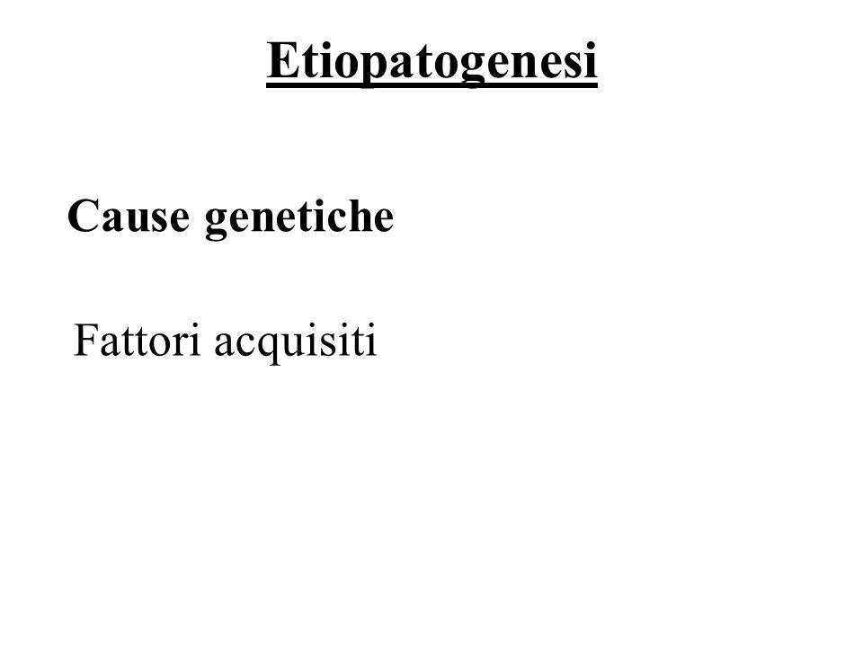 Etiopatogenesi 41/69 Fattori acquisiti Cause genetiche