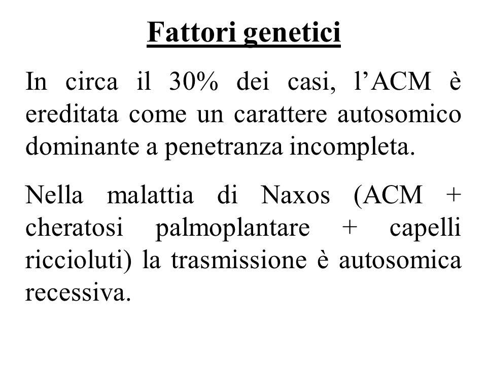Fattori genetici In circa il 30% dei casi, lACM è ereditata come un carattere autosomico dominante a penetranza incompleta. Nella malattia di Naxos (A