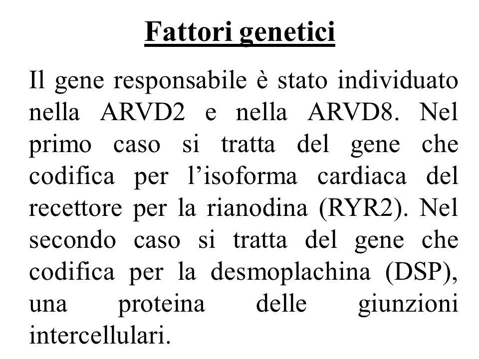 Fattori genetici Il gene responsabile è stato individuato nella ARVD2 e nella ARVD8. Nel primo caso si tratta del gene che codifica per lisoforma card