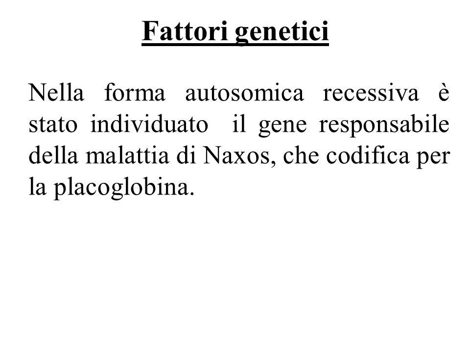 Fattori genetici Nella forma autosomica recessiva è stato individuato il gene responsabile della malattia di Naxos, che codifica per la placoglobina.