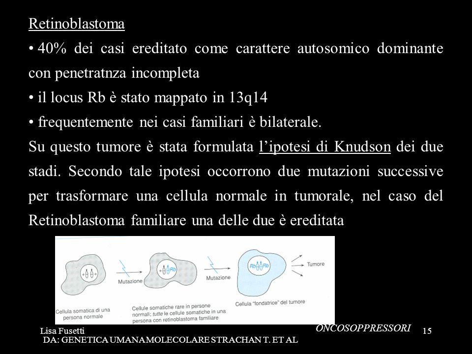 Lisa Fusetti15 Retinoblastoma 40% dei casi ereditato come carattere autosomico dominante con penetratnza incompleta il locus Rb è stato mappato in 13q