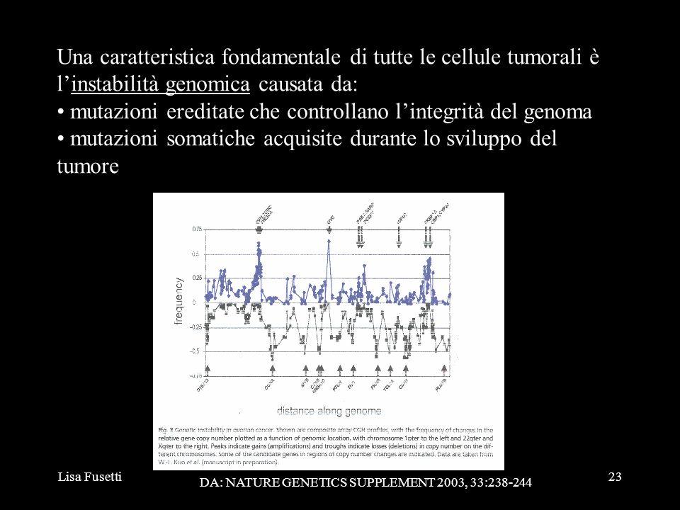 Lisa Fusetti23 Una caratteristica fondamentale di tutte le cellule tumorali è linstabilità genomica causata da: mutazioni ereditate che controllano li