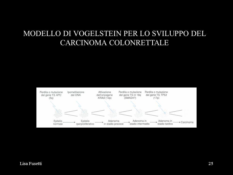 Lisa Fusetti25 MODELLO DI VOGELSTEIN PER LO SVILUPPO DEL CARCINOMA COLONRETTALE